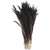 Coque Feathers 14-16in Strung 113gm Natural Half Bronze